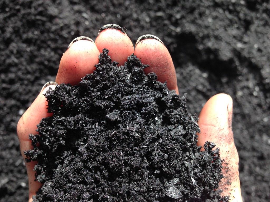 Biochar as an alternative growing media to peat